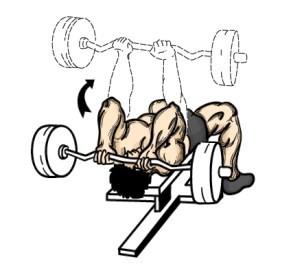 french press workout