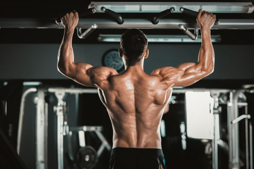 back exercises bodybuilding